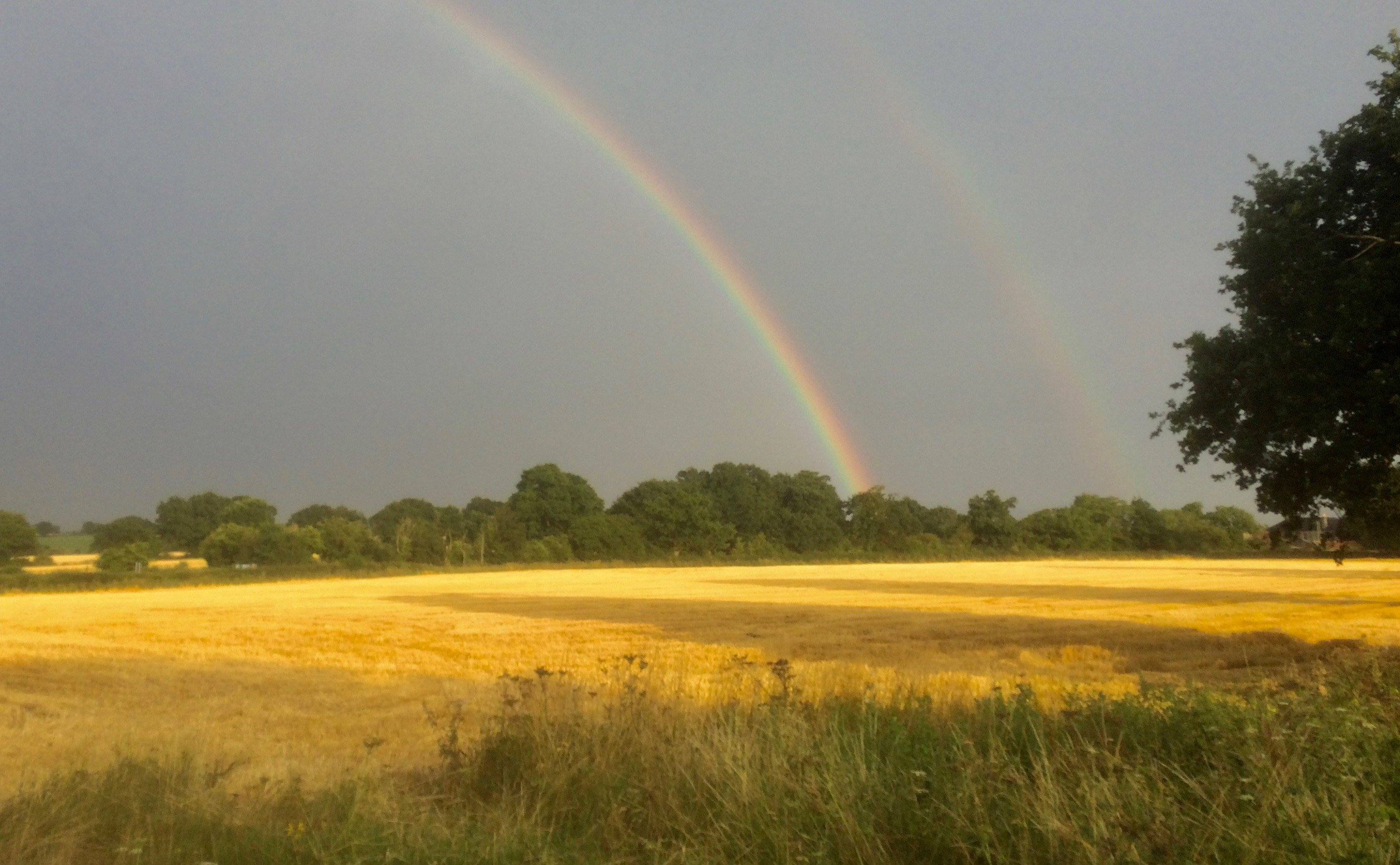 Norfolk Harvest Time Rainbow